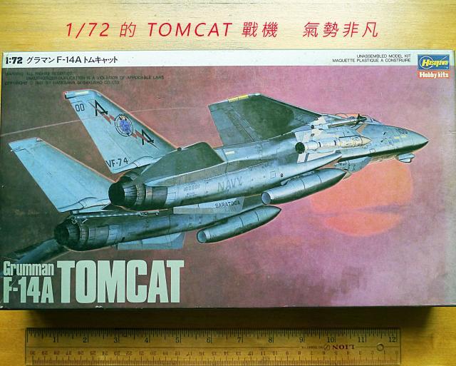 已售。謝謝各位及YL.香港!1/72的F-14A TOMCAT 戰機+1/35日本陸軍 oldpeter(4/28 16:31) 二手 雜項 收藏品 免費